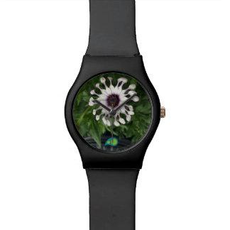 Flor de la estrella relojes de pulsera