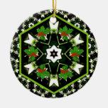 Flor de la estrella y ornamento del navidad del ornamentos para reyes magos