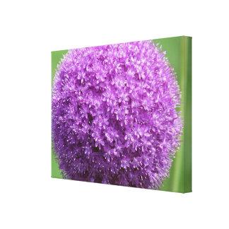 Flor de la explosión de la púrpura impresión en lienzo