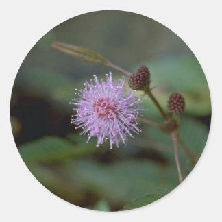 Flor de la fibra pegatina redonda