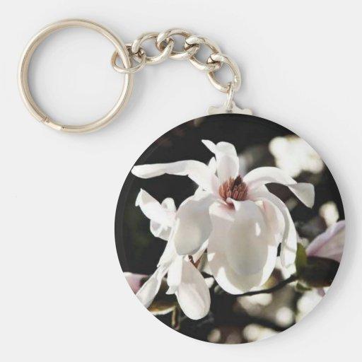 Flor de la flor del árbol de Dogwood Llaveros