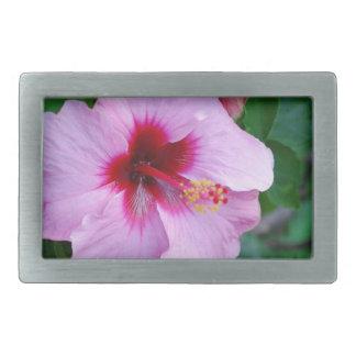 Flor de la flor del hibisco hebilla cinturon rectangular