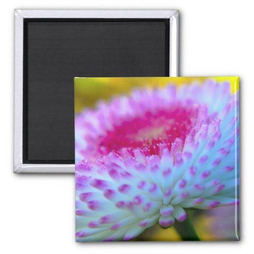 Flor de la floración imán de frigorifico