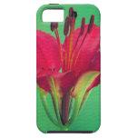 Flor de la floración iPhone 5 protector