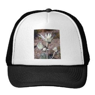 Flor de la franela gorros bordados
