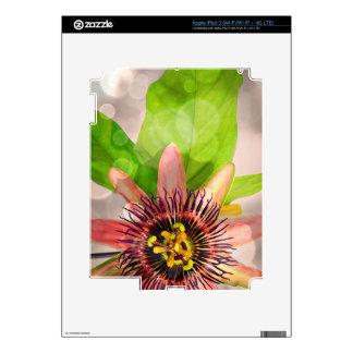 Flor de la fruta de la pasión pegatina skin para iPad 3