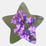 Flor de la lila pegatina forma de estrella personalizada