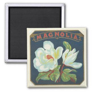 Flor de la magnolia del vintage imán cuadrado