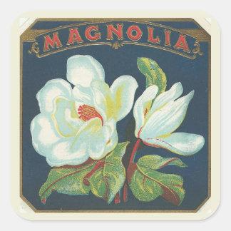 Flor de la magnolia del vintage pegatina cuadrada