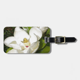 Flor de la magnolia etiquetas bolsa