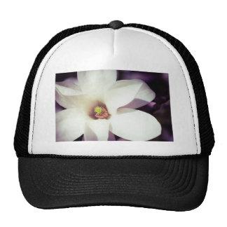 Flor de la magnolia gorro