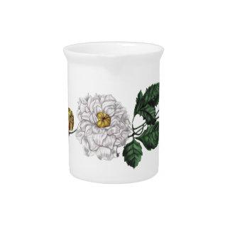 Flor de la magnolia jarrón