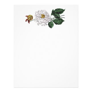 Flor de la magnolia membrete a diseño