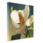 Flor de la magnolia meridional, romántica impresión de lienzo