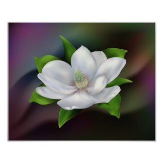 Flor de la magnolia poster