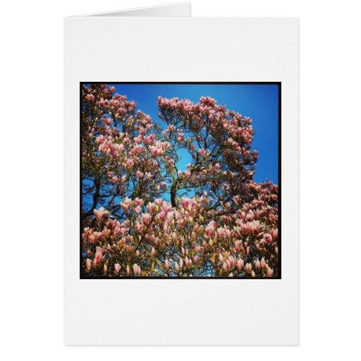 Flor de la magnolia tarjeta de felicitación