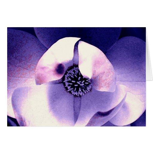 Flor de la magnolia tarjetas