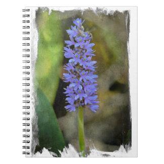 Flor de la mala hierba de Pickerel Libretas Espirales