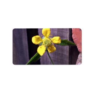 Flor de la mala hierba etiquetas de dirección