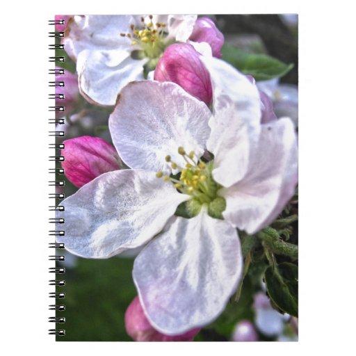 flor de la manzana libro de apuntes con espiral