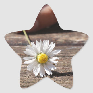 Flor de la margarita pegatina en forma de estrella