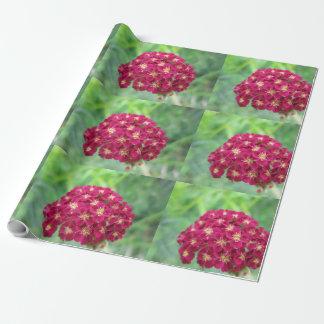 Flor de la milenrama del rojo rico papel de regalo