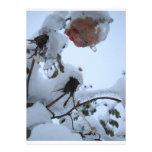Flor de la nieve comunicados personalizados