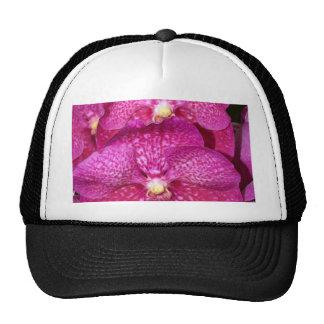 Flor de la orquídea gorro de camionero