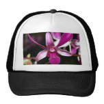 Flor de la orquídea gorros bordados