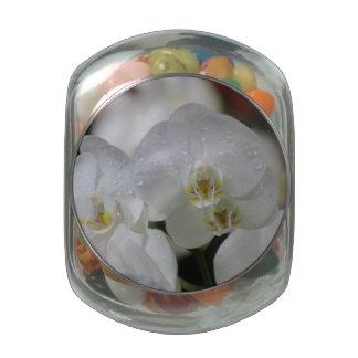Flor de la orquídea jarrones de cristal