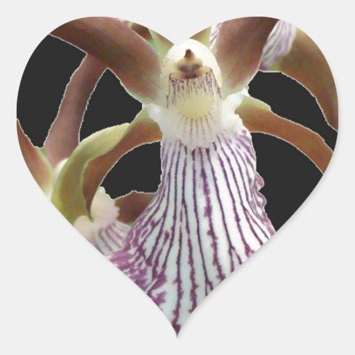 Flor de la orquídea pegatinas de corazon
