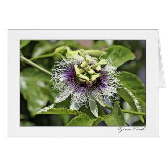 Flor de la pasión tarjeta de felicitación