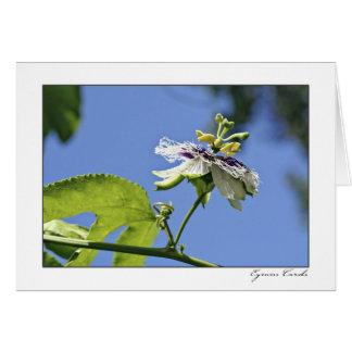 Flor de la pasión y el cielo tarjeta de felicitación