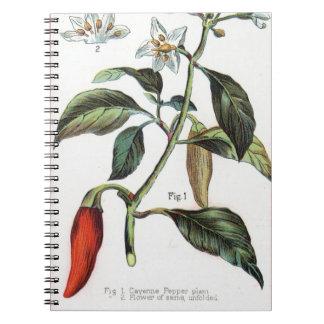 flor de la pimienta de cayena libro de apuntes con espiral