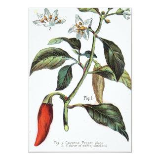 flor de la pimienta de cayena invitación 12,7 x 17,8 cm