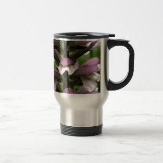 Flor de la planta de ostra en la floración taza de viaje
