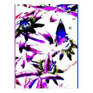Flor de la porcelana de la pasionaria - postal