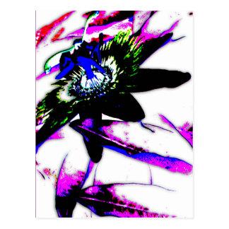 Flor de la porcelana de la pasionaria - postal 3
