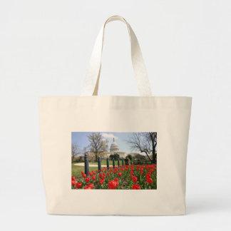 Flor de la primavera del capitolio de los E.E.U.U. Bolsa