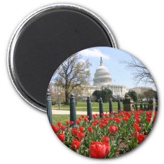 Flor de la primavera del capitolio de los E.E.U.U. Imán Redondo 5 Cm