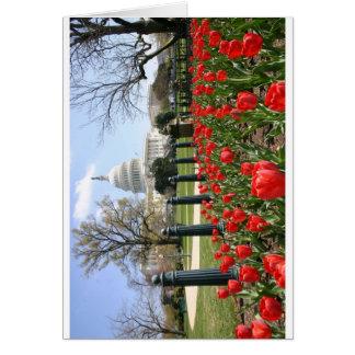 Flor de la primavera del capitolio de los E.E.U.U. Tarjeta De Felicitación