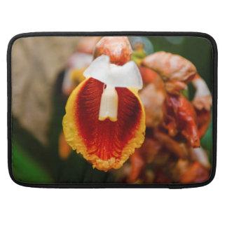 Flor de la primavera fundas para macbook pro