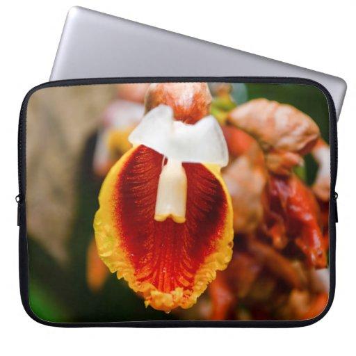 Flor de la primavera fundas computadoras