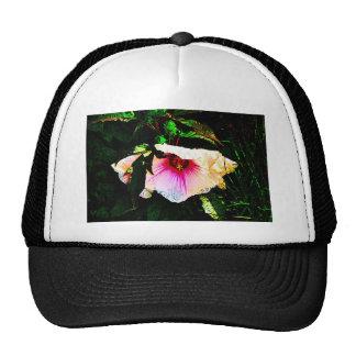 Flor de la primavera gorras