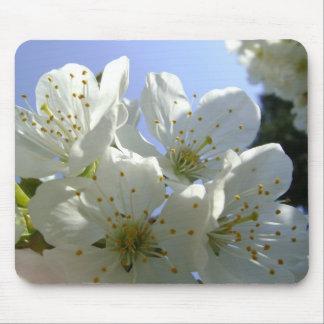 Flor de la primavera mousepads