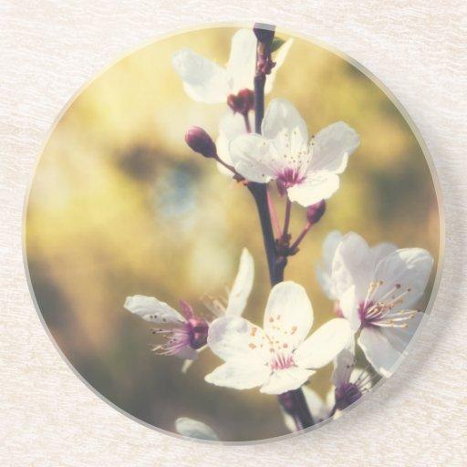 Flor de la primavera posavasos personalizados
