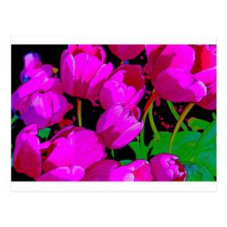 Flor de la primavera postal