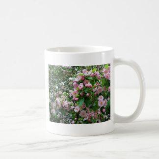 Flor de la primavera taza clásica