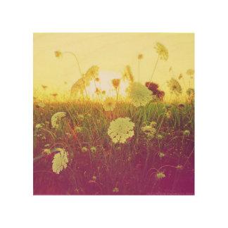 Flor de la puesta del sol cuadros de madera