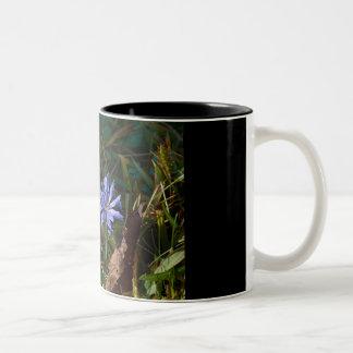 Flor de la púrpura del parque nacional de taza de dos tonos